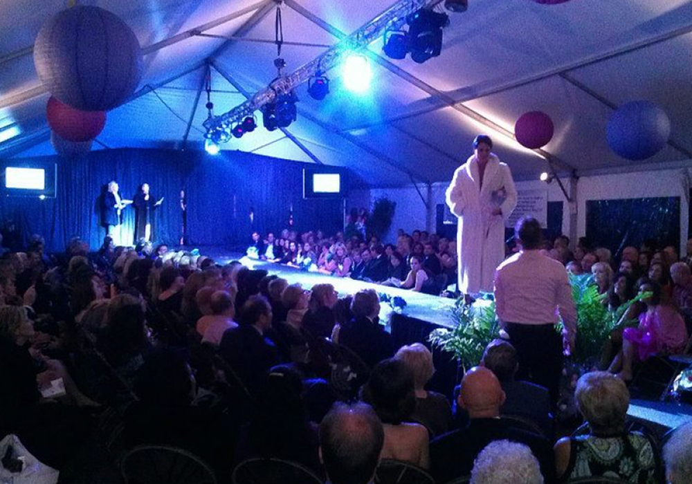 Healing Consciousness Foundation Fashion Show